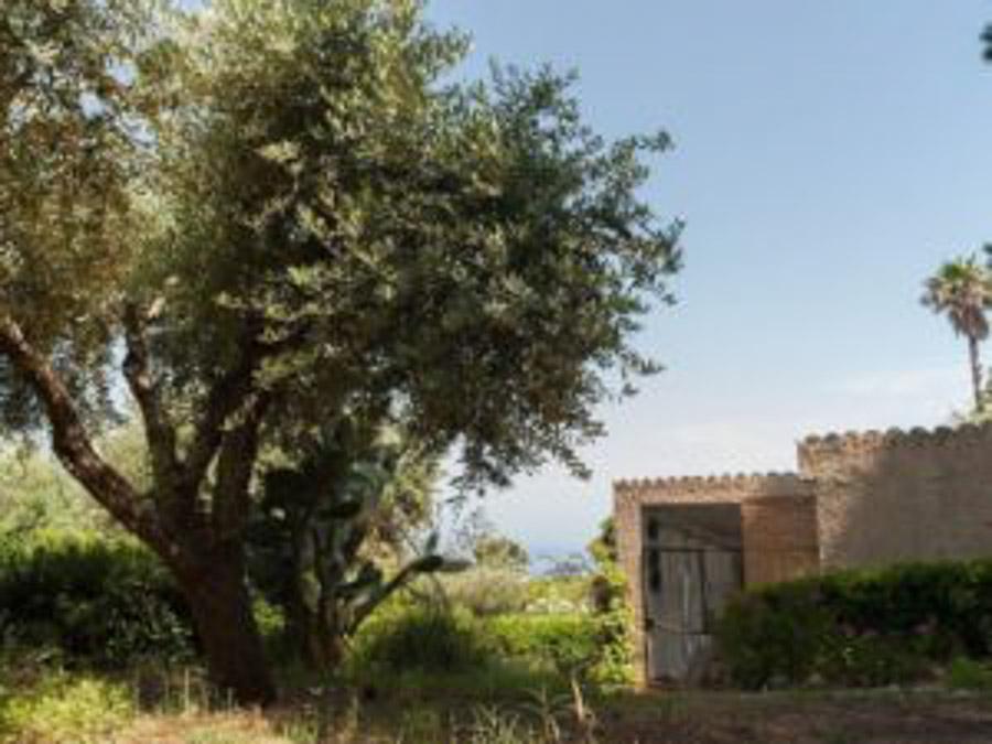 Casa Angiolone – Individuelles Ferienhaus mit Meerblick am Capo Vaticano - Grundstück