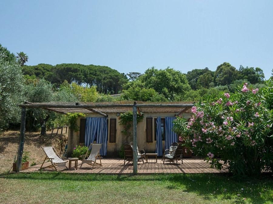 Casa Antonia – Ferienhaus auf herrlichem Terrain am Capo Vaticano - Garten
