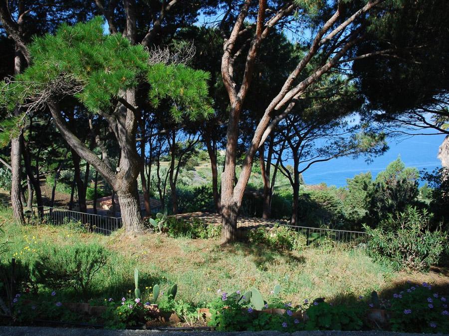 Strandnahes Ferienhaus in der Natur am Capo Vaticano -  Garten
