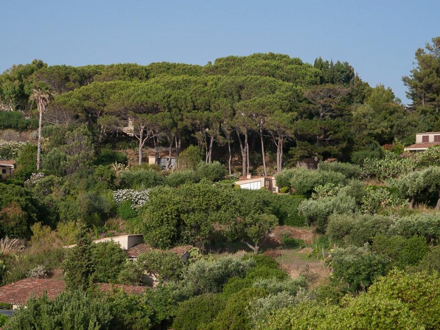 Strandnahes Ferienhaus in der Natur am Capo Vaticano - Grundstück
