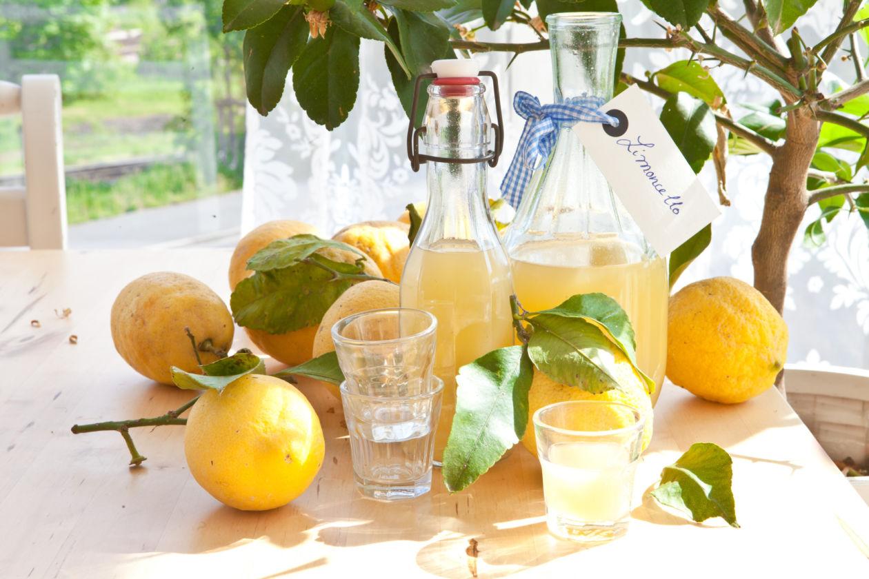 Hausgemachter Limoncello aus frischen Bio-Zitronen in kleinen Flaschen