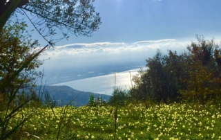 kalabrien berge und meer